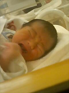 産まれたよ!