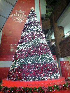 すっかりクリスマス